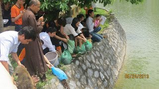 Thaihabooks tổ chức Nghi thức phóng sinh, đón mừng lễ Phật đản, Phật lịch 2557
