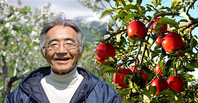 Câu chuyện quả táo thần kỳ của Kimura